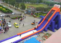 Huge Shark Inflatable Slide With PVC Material / Blow Up Water Slide